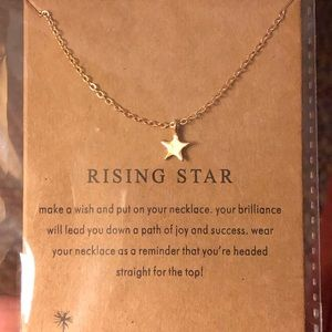 Jewelry - Rising Star Necklace.